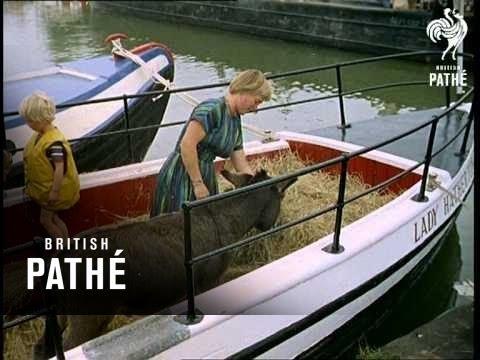 Barge Rally (1961)