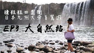 膽粗粗四圍衝 ~ 日本九州大分自駕遊 EP3 大自然站 (海豚島 原尻瀑布 農場)