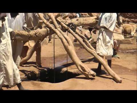 Sandy Sudan