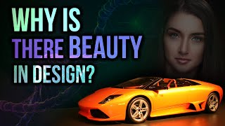 Why Is There Beauty In Design? | David Rives