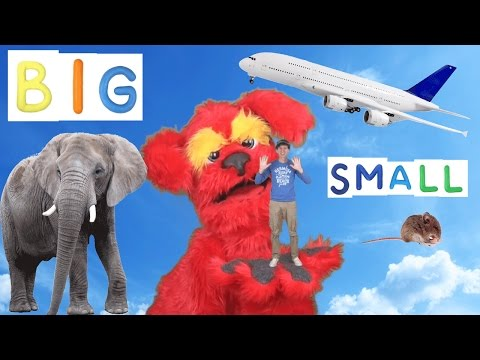 Big Small Action Song for Kids | Learning Opposites | Learn English Children