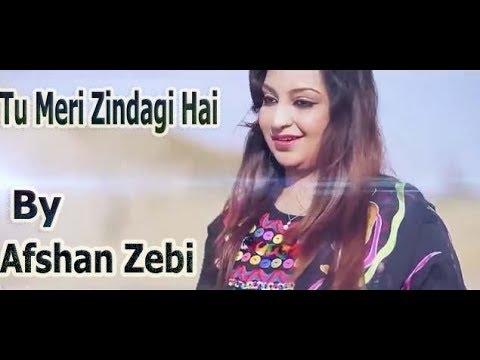 Tu Meri Zindagi Hai (Full Songs) Afshan Zebi 2017