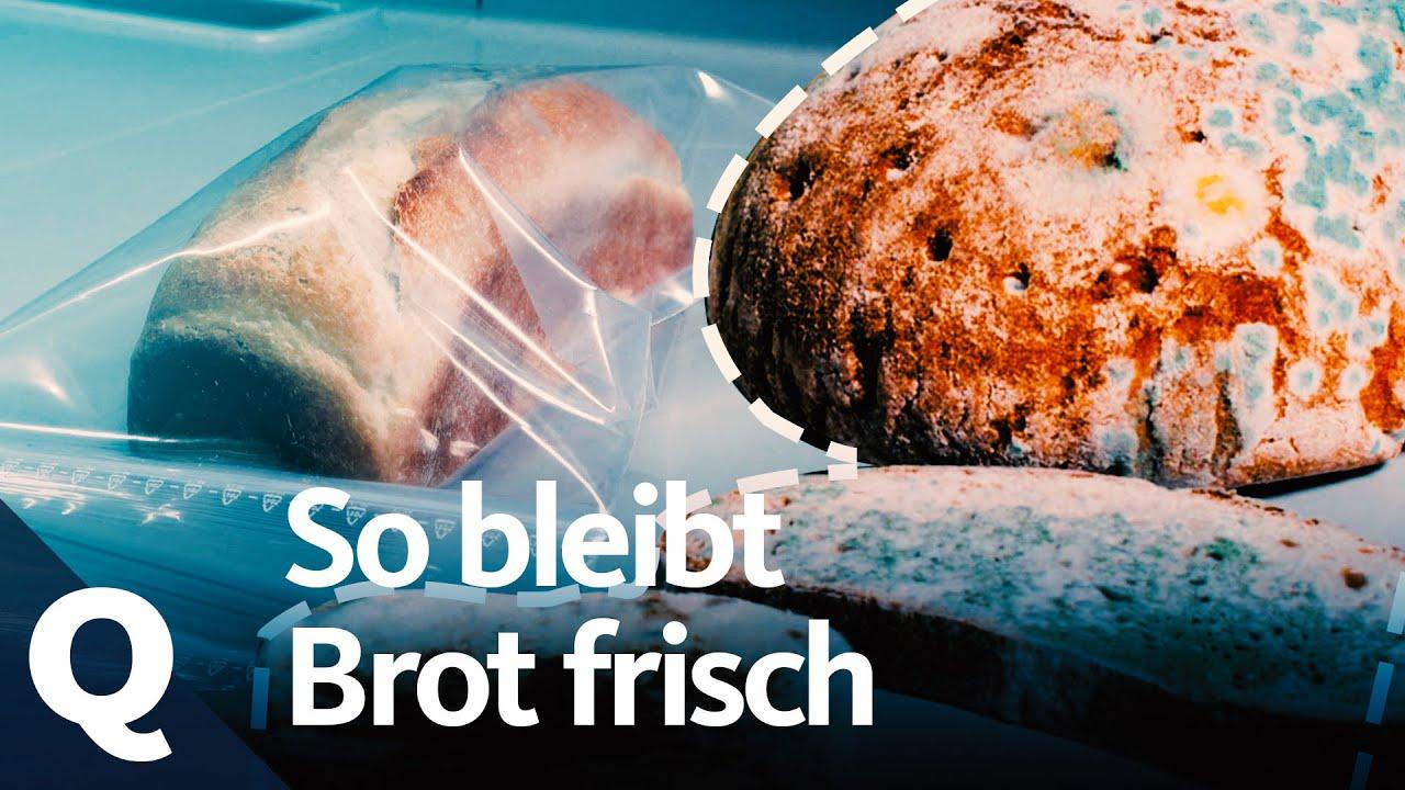 Brot Richtig Aufbewahren So Bleibts Frisch Quarks Youtube