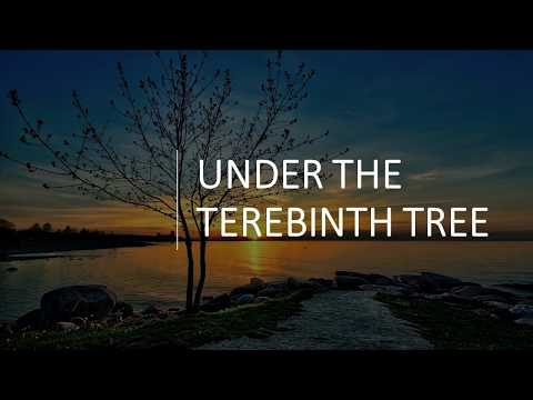 Under the Terebinth Tree
