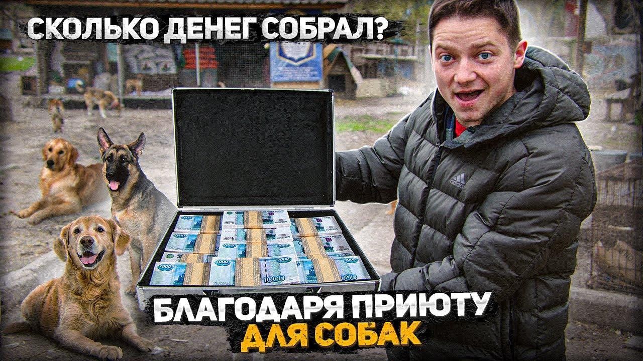 Куда потратил собранные на приют  деньги?  Yura Vorozhko