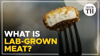 What is lab-grown meat?