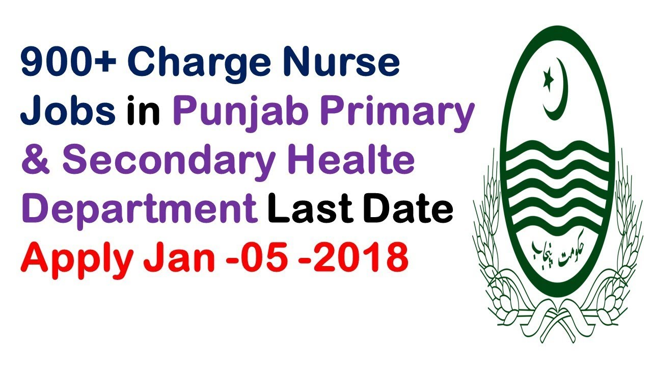 900 charge nurse jobs in punjab primary secondary healte