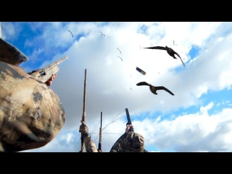 Goose Hunting, the