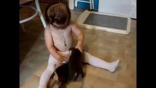 Купить собаку, той-терьер.8-905-546-66-92. Мини, РКФ.