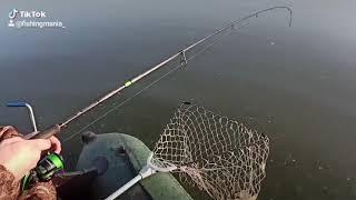 Как поймать огромного судака Судак на джиг Судак осенью Судак зимой Стас Рыбалка Спиннинг Фаворит