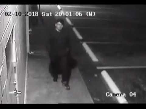 Surveillance Video: Metro PCS in Zephyrhills