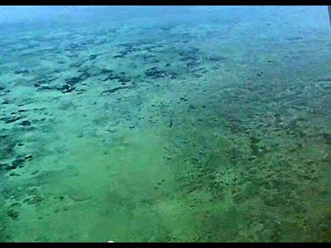 Flying over the Caribbean Sea, Tropic Air, Cessna Caravans, Belize, Central America, South America