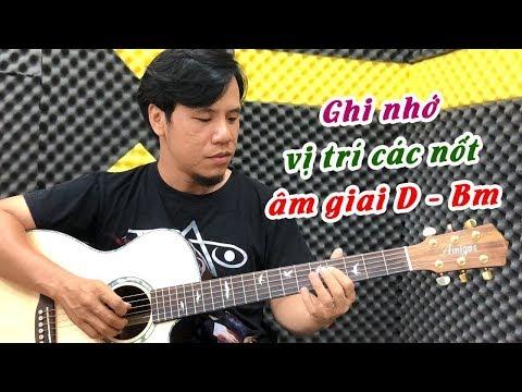 Cách Ghi Nhớ Tất Cả Các Nốt âm Giai D - Bm   đơn Giản, Dễ Nhất   Guitar4Freedom