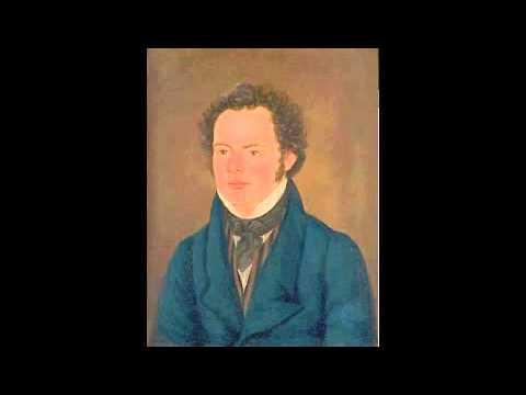 Schubert Last String Quartets 12-15 New Hungarian Quartet