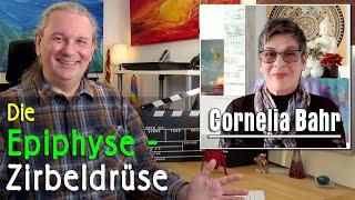 Re-Aktivierung Zirbeldrüse / Epiphyse   Cornelia Bahr - GAWÉL