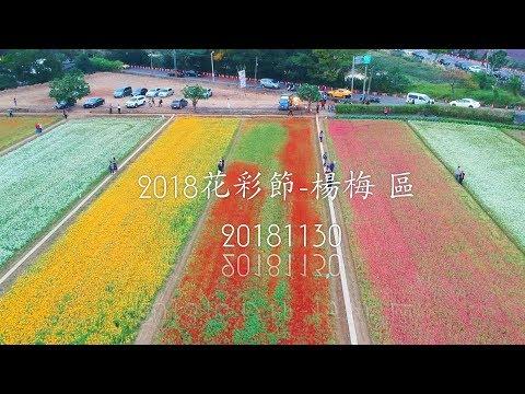 2018桃園花彩節-楊梅區 20181130