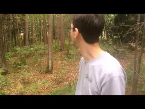 Bigfoot Attack Commercial by World&39;s Greatest Animals Caseco
