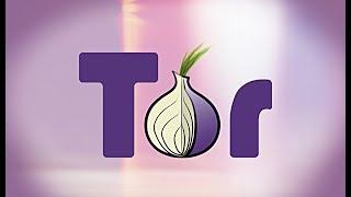 Tor Browser: Install & Setup (100% works)