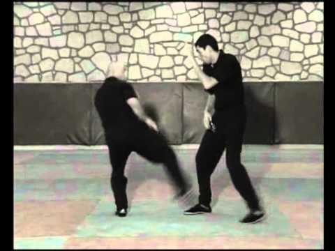 Jeet Kune Do Techniques De Base Youtube