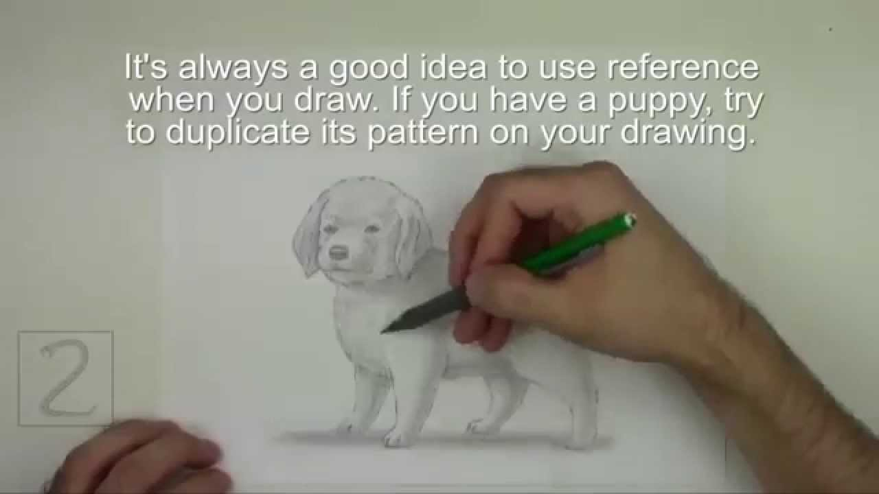 Karakalem Sevimli Köpek çizimi Youtube