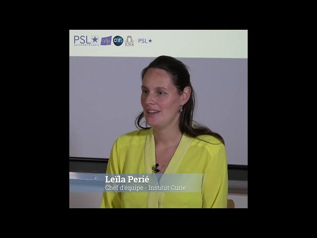 2 questions à Leïla Perié (Laboratoire Physico-Chimie Curie – UMR 168 – Institut Curie)