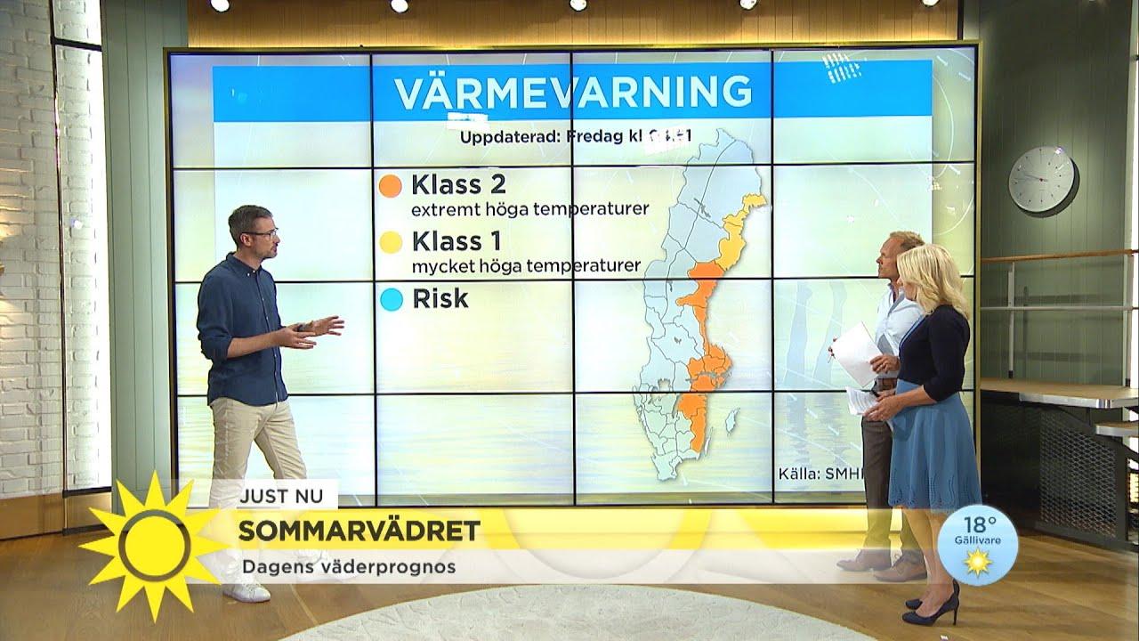 Sommarvädret – här är det störst åskrisk - Nyhetsmorgon (TV4)