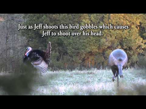 3 Shot Wonder Turkey Hunt - Jeff Rutledge