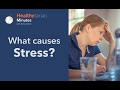 Stressors and Common Causes of Stress (Healthytarian Minutes ep. 1)