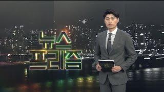 """[탐사보도 뉴스프리즘] 개 식용 논란 """"복날은 간다"""" / 연합뉴스TV (Yonhapnews…"""