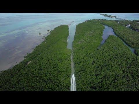 The Tides Of Time: Islamorada, Florida