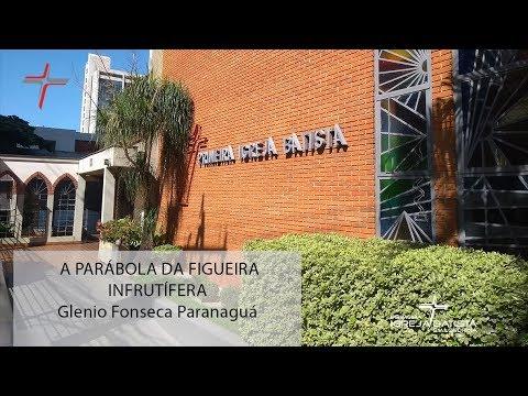 A PARÁBOLA DA FIGUEIRA INFRUTÍFERA - Glenio Fonseca Paranaguá