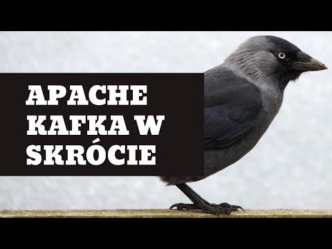 Jak działa Apache Kafka?