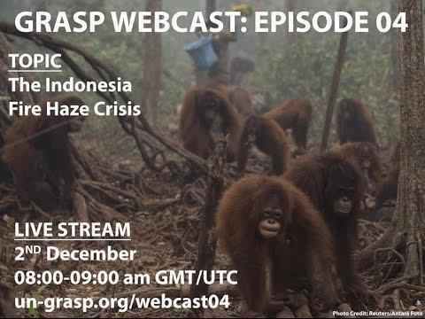 The Indonesia Fire Haze Crisis