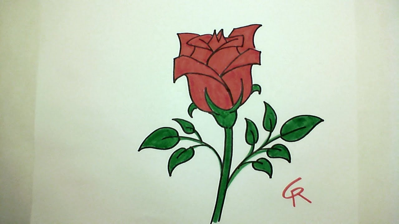 Learn Draw Pretty Rose In Bloom - Icanhazdraw