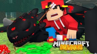 Minecraft DRAGONS - MY NEW NIGHT FURY IS DEAD!!!