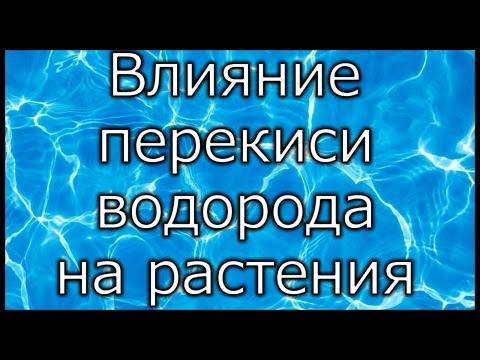 Даников Николай. Целебная перекись водорода