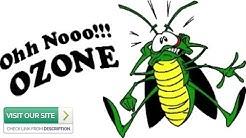 Expert Pest Control Paradise Valley AZ: 3 Top Pests Of 2019 (480-493-5028) Ozone Pest Control