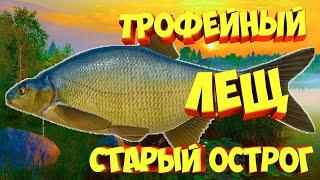 русская рыбалка 4 Трофейный Лещ озеро Старый Острог рр4 фарм Алексей Майоров