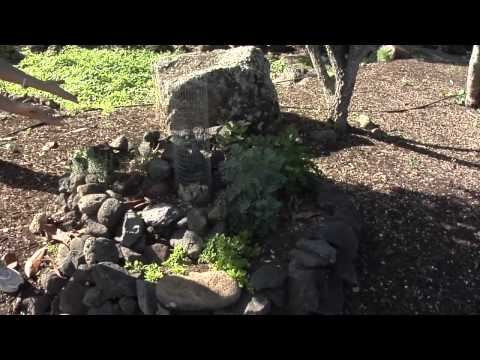 Energy Today: Nov 2012 - Ep1 - HECO, Halawa Xeriscape, eWaste Disposal Days