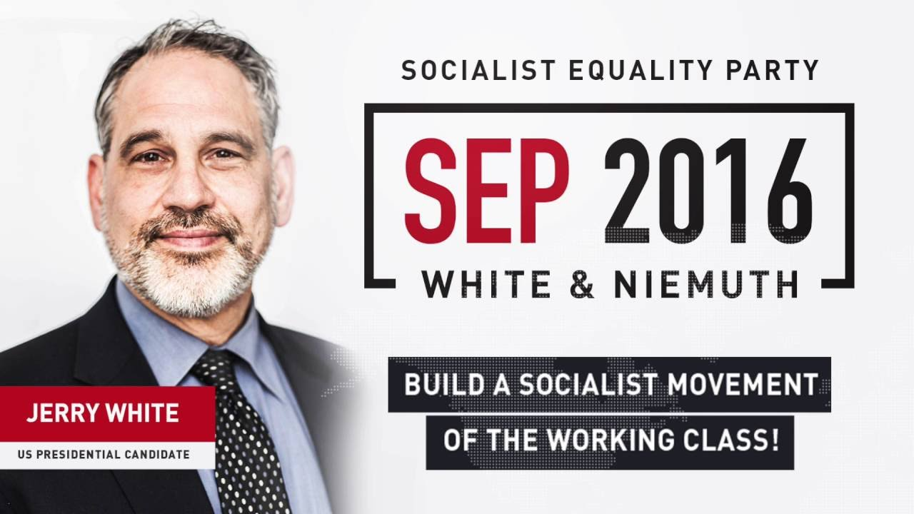 Image result for socialist equality party 2016