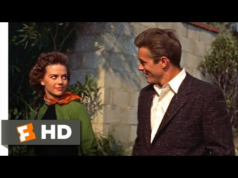 Rebel Without a Cause (1955) - I Go With the Kids Scene (4/10) | Movieclips