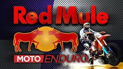 RED MULE rando à Saint Félix de Villadeix 27 10 2018