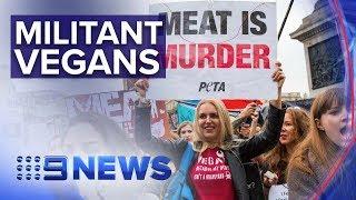 Militant vegans stage world's biggest animal rights protest | Nine News Australia