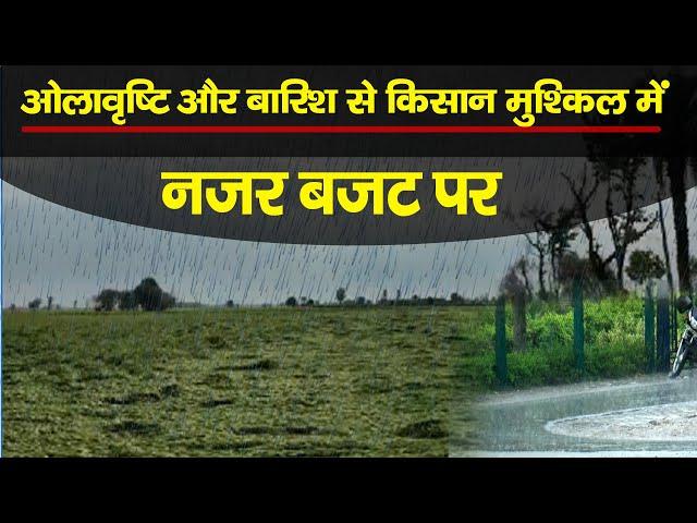 ओलावृष्टि और बारिश से किसान मुश्किल में || नजर बजट पर || City Tehelka