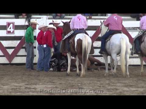 Horse Killed at Cowtown Rodeo