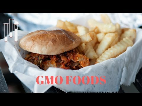 What Are GMO Foods?