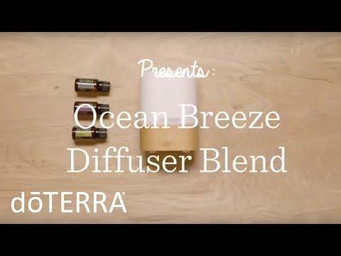 diy-ocean-breeze-diffuser-blend-using-lavender-essential-oil
