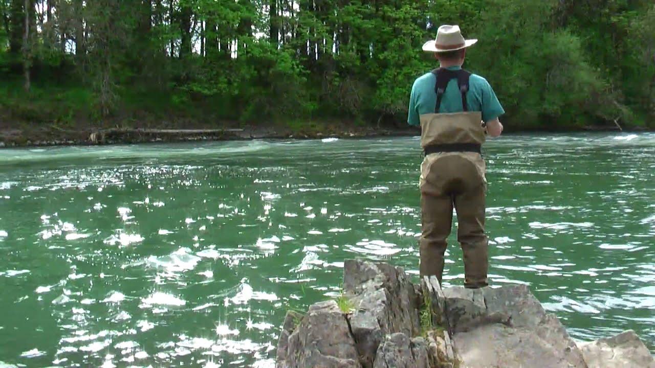 Fishing at the santiam river oregon fishing forum for Willamette river fishing report
