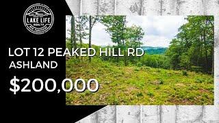 Lot 12 Peaked Hill Rd Ashland, NH