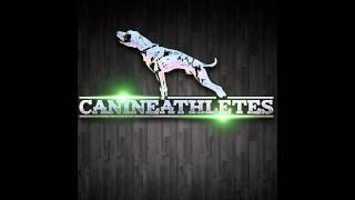 Canine Athletes Radio - Podcast #1 - Rochester's Finest